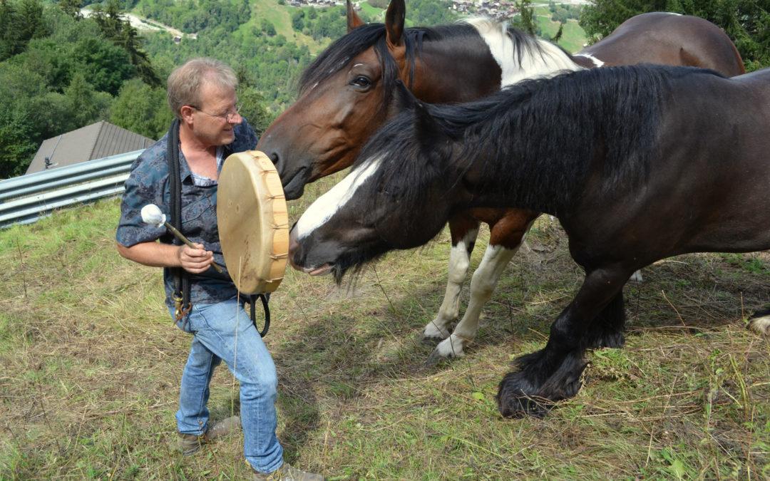 Claudio D'Alessio: l'homme qui tambourinait à l'oreille des chevaux